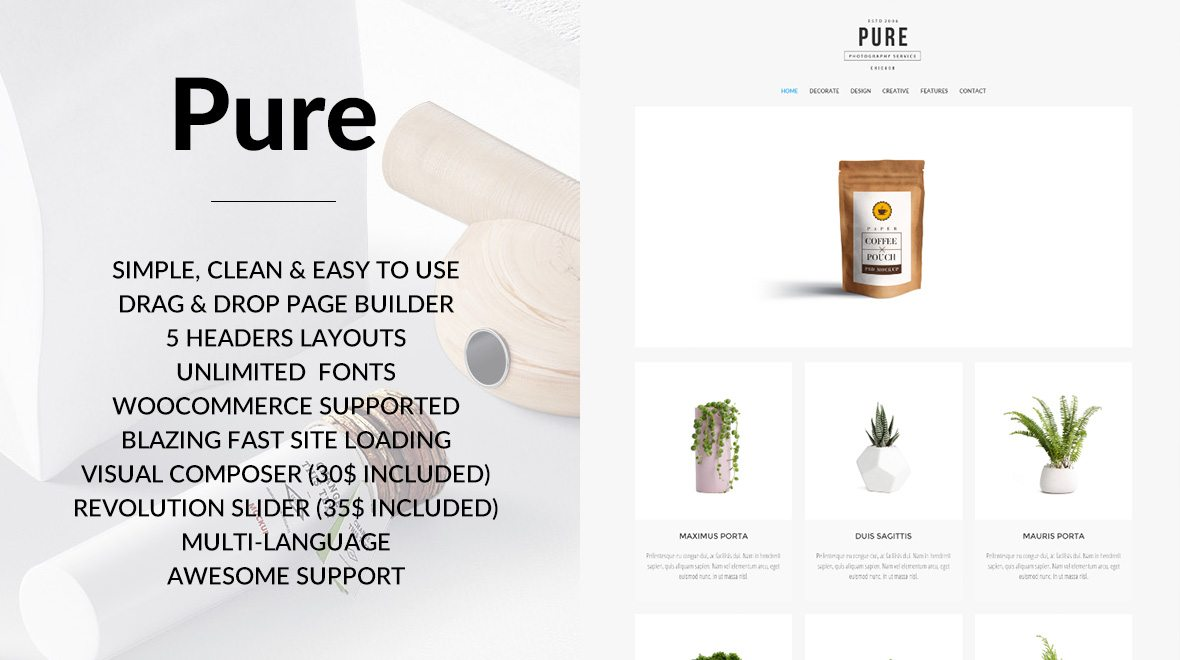 pure beginner business wordpress theme