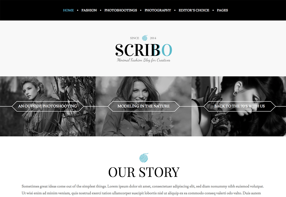 Premium Coding Scribo WordPress Fashion Blog Theme