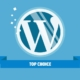 Why WordPress is the Best Tool to Create Your Website